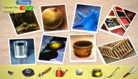 Скриншот №3 для игры Блеск