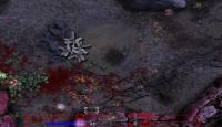 Скриншот №3 для игры Звездный Легион