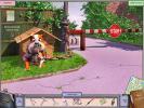 Скриншот №5 для игры Город дураков