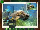 Скриншот №1 для игры Карибский пазл